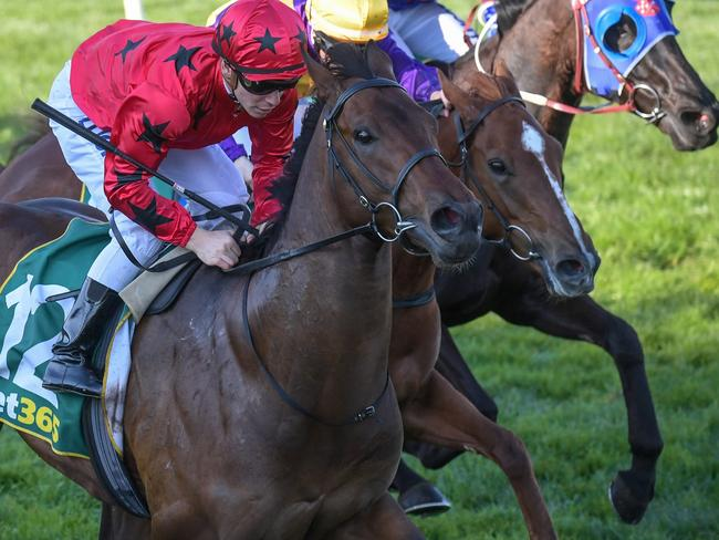 Bravo Tango, ridden by Ben Melham, wins at Geelong in September. Picture: Getty Images
