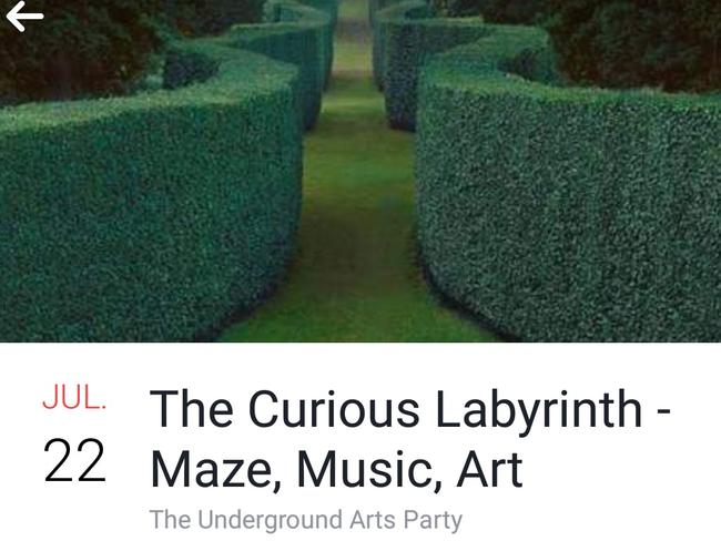 The Curious Labyrinth promised a maze, music and art.