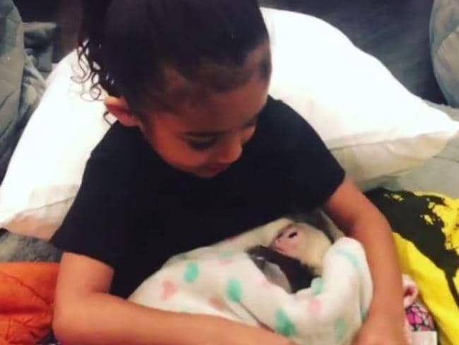 Royalty Brown seemed smitten with her new pet. Picture: chrisbrownofficial