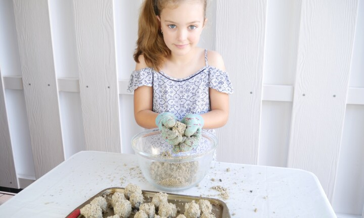 How to make bee friendly seed balls