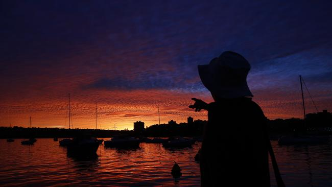 Last night: Cleveland Rose watches the fiery sunset over Manly Cove. Pic: Brad Hunter