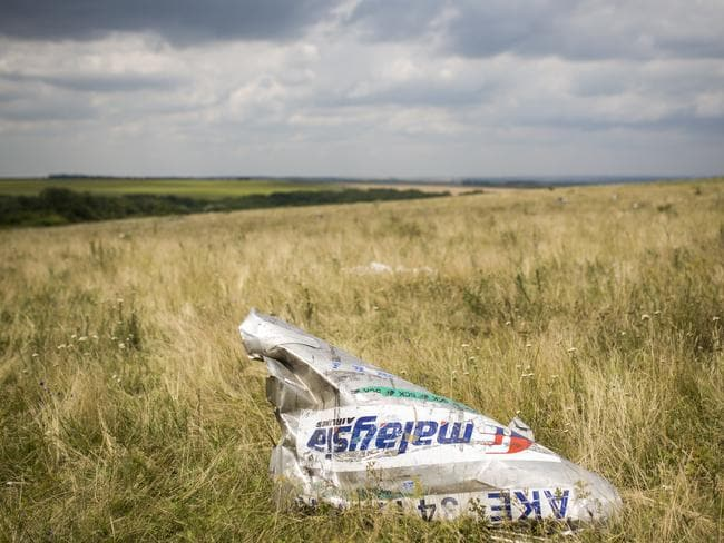 MH17 wreckage lies in a field near the crash site.