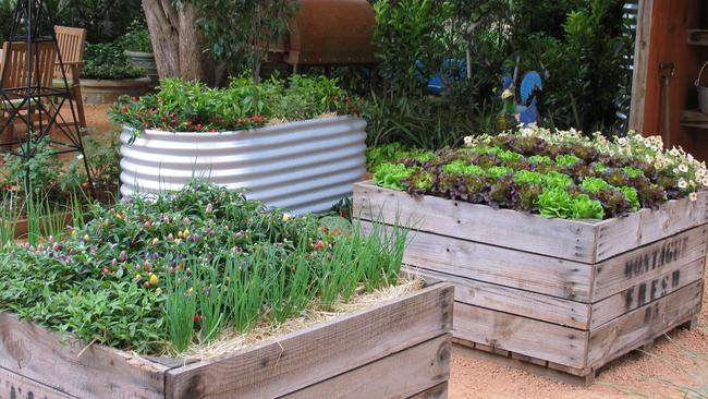 Raised garden beds make your vegies sing