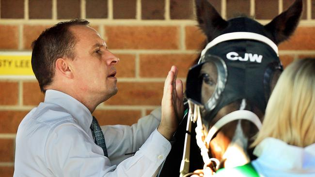 With two-year-old numbers occupying a third of most stables at this time of year, trainer Chris Waller believes more juvenile races need to be programmed. Picture: Mark Evans.