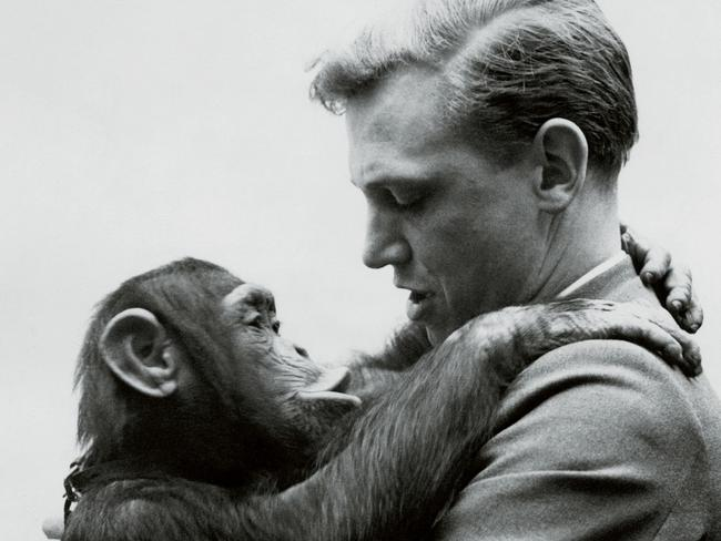 It's not all snakes and creepy crawlies... David Attenborough hugs a chimpanzee.