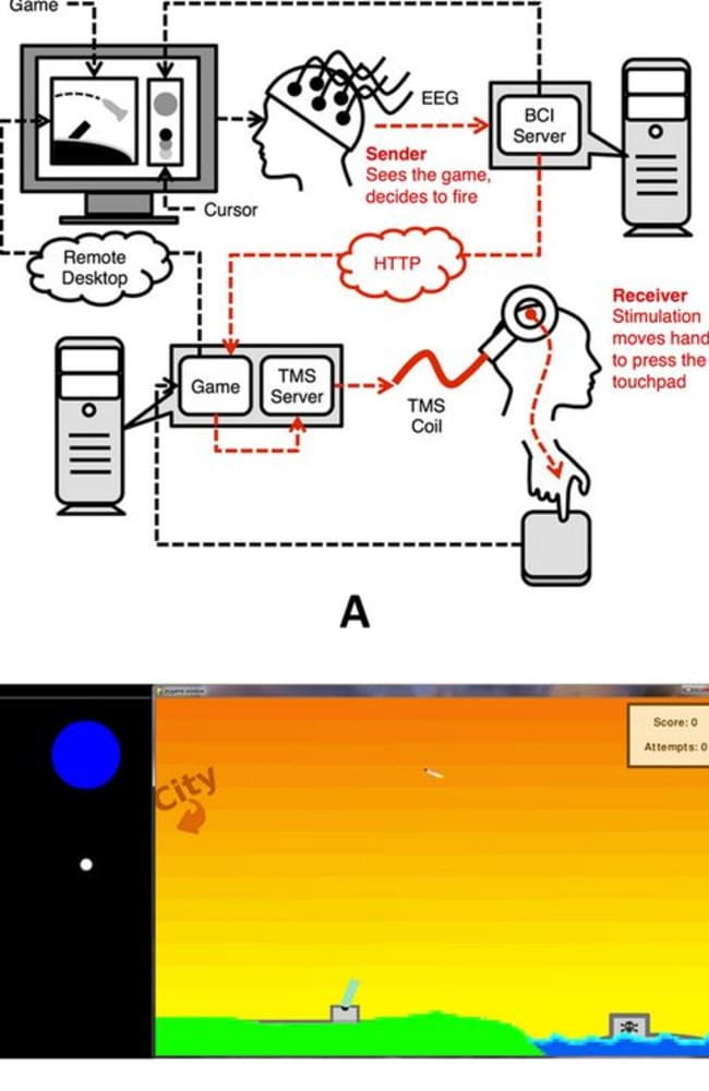 Experimental setup ... a schematic diagram of the setup (top) and a screen shot from the game (bottom). Picture: PLOS ONE