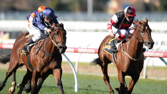 Evil Cry (right) was unable to get past Lone Eagle at Caulfield last year. Picture: AAP
