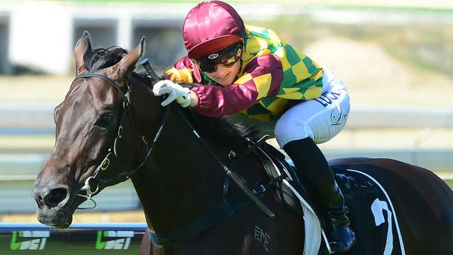 Sheiswhatsheis heads Tony Gollan's trio in the UBET Classic on Saturday. Picture: Grant Peters, Trackside Photography