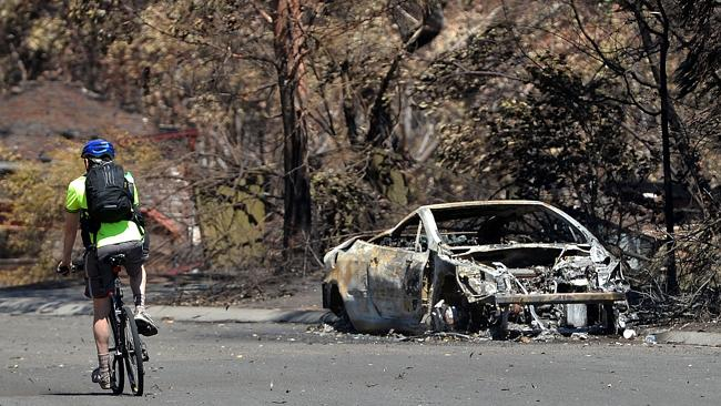 A man rides past a car burnt out by recent bush fires in Springwood. Photo: AFP