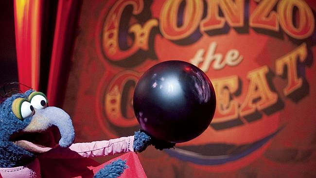 Gonzo the Great is one strange little dude, but is standing out front he crowd a bad thing? Picture: Scott Garfield/ Disney