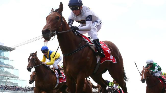 Roobeena (yellow and blue) ran second behind Setsuna during the Flemington carnival in the spring. Picture: Getty Images