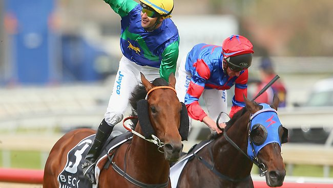 All Too Hard will attempt to upset Pierro twice in two weeks when they go head to head again in the Cox Plate.