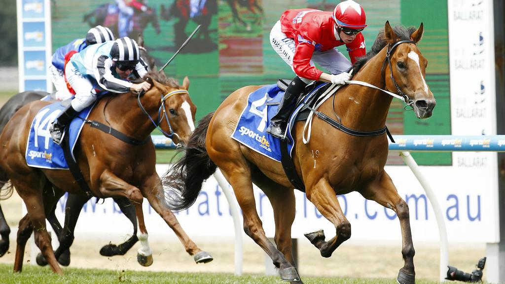 Melbourne comprehensive preview of every race for sandown for 979 the beat number