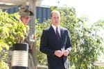 Prince Williams at Amberley.