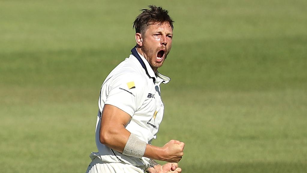 James Pattinson is on fire for the Bushrangers.