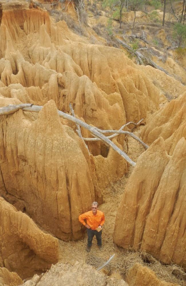 An alluvial gully. Source: Greening Australia.