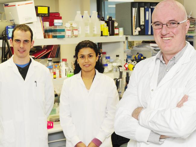 Pioneers in diabetes research ... The Garvan Institute's PHD Scholars Nathan Zammit and Jeanette Villanueva with Professor Shane Grey.
