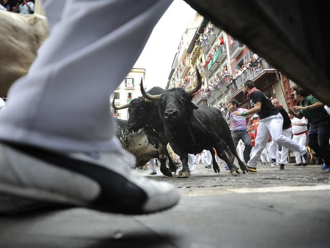 Festival toll ... animal rights activists warned that 48 bulls are killed at the festival each year.