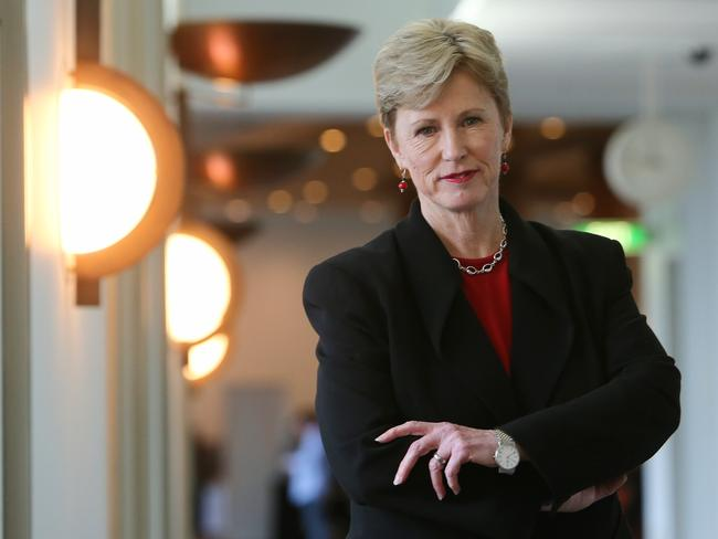 Standing firm … Greens Leader Christine Milne.