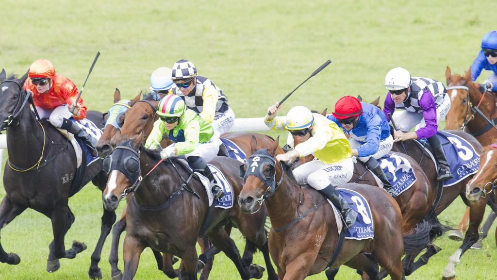 "Miss Debutante (yellow) wins race 4 during Scone Races. Scone , ""The horse capital of Australia"", is located in the Upper Hunter Shire in the Hunter Region of New South Wales. Pic Jenny Evans"
