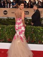 Quantico star Priyanka Chopra is pretty in pink at the Screen Actors Guild Awards. Picture: Jordan Strauss/Invision/AP