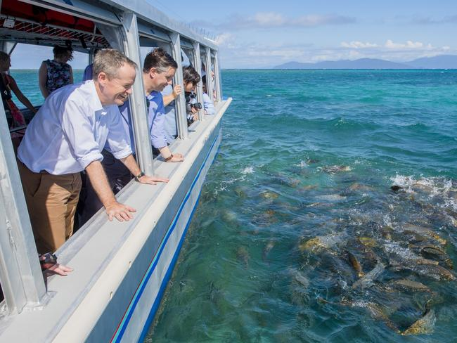Leader of the Opposition Bill Shorten announced a $500 million boost to the Great Barrier Reef. Picture: Jason Edwards