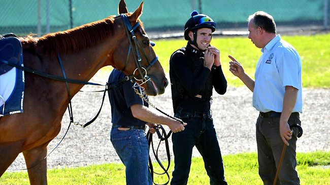 Werribee Quarantine Centre: Michael Rodd meets foreman Robin Trevor-Jones before getting re-acquainted with Red Cadeaux. Picture: Jay Town