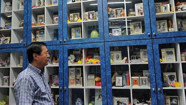 Pets Cremation Centre owner Patrick Lim, 60, inspects cabinet shelves filled with urns holding ashes of deceased pets at the columbarium in Singapore.