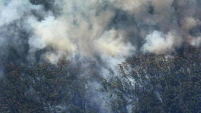 A fixed-wing aircraft crashed in remote bushland near Ulladulla.