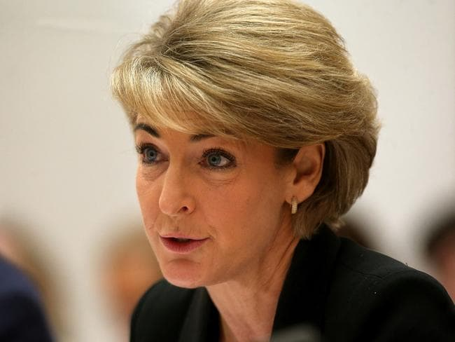 Up until recently Michaelia Cash held the title minister for women. Picture Kym Smith