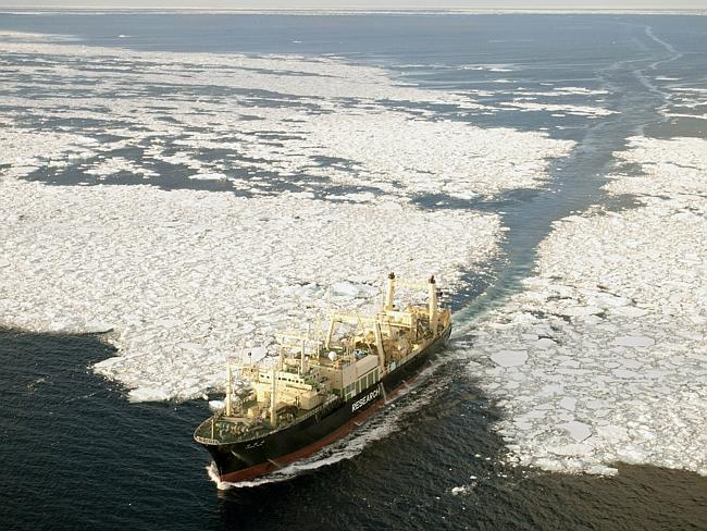 Annual hunt ... the Nisshin Maru, the factory ship of Japanese whaling fleet, exits the ice floes in the Southern Ocean, in 2011. Picture courtesy of Shepherd Conservation Society, Barbara Veiga.