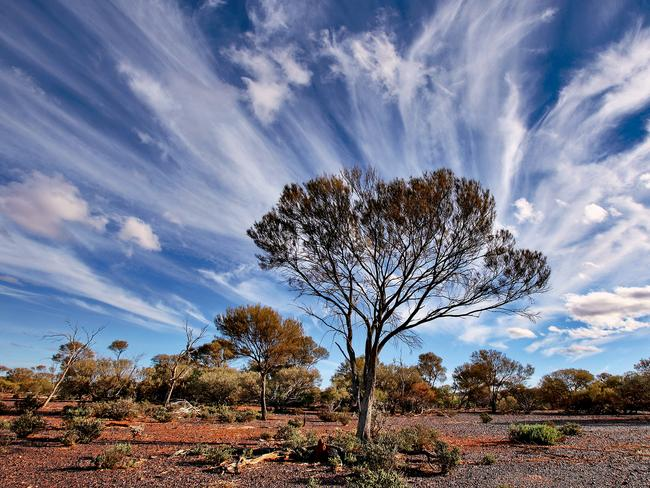 Pretty ... Cirrus clouds near Mount Magnet, WA. Picture: Casper Smit