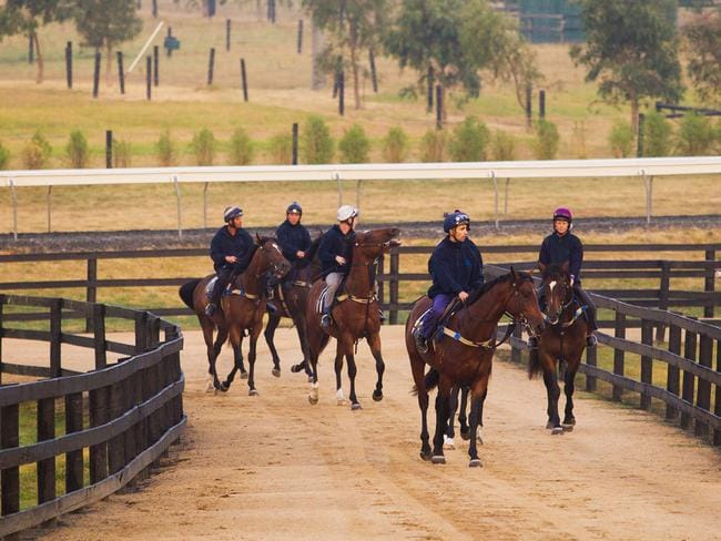 Macedon Lodge, arguably the finest private training complex in the country, is on the market. Picture: Supplied