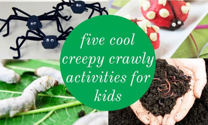 5 cool creepy crawly activities for kids