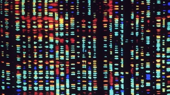Afragment of the human genome ... Cancer will no longer be described by the organ it appears in but by its genetic basis. Picture: AP / HO, The American Museum of Natural History