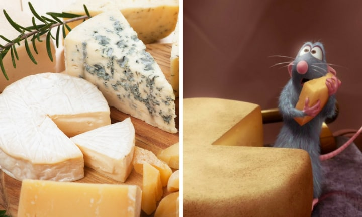 Science says we should be eating more cheese