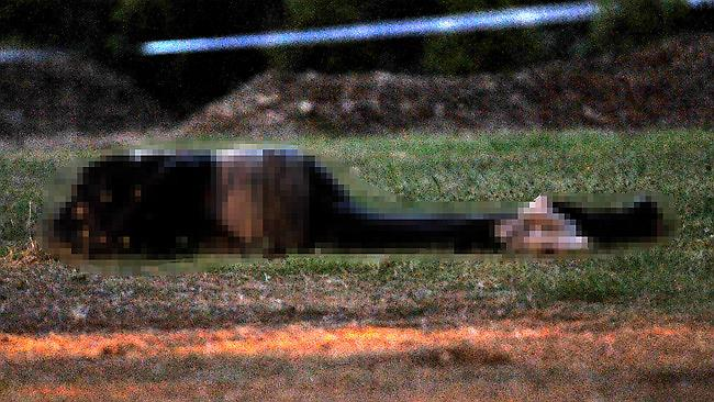 The body of the shooting victim lies at the crime scene in Fitzroy Gardens. Picture: