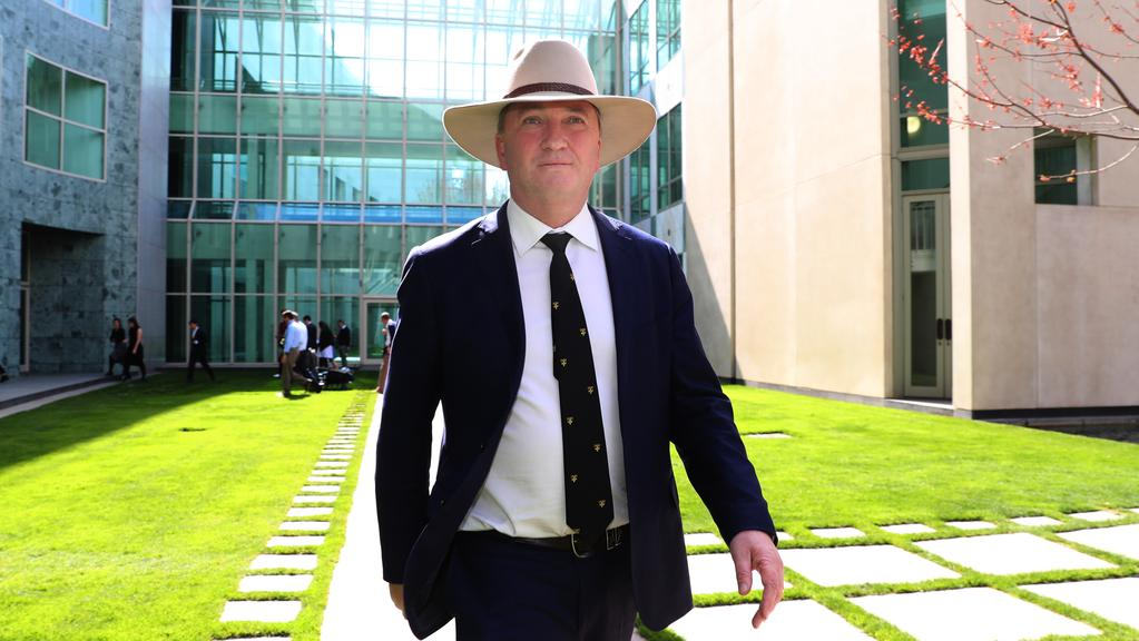 Barnaby Joyce's citizenship case will go before the High Court again today, along with six other federal MPs. Picture Gary Ramage
