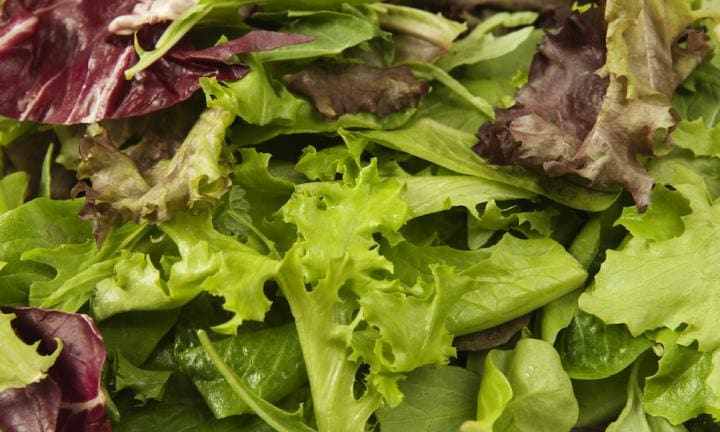 Breaking: Salmonella outbreak linked to lettuce sold at Coles and Woolworths