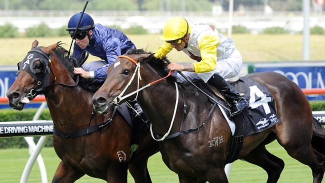 The Gai Waterhouse-trained Valentia will line up in the Group 2 $175,000 Skyline Stakes (