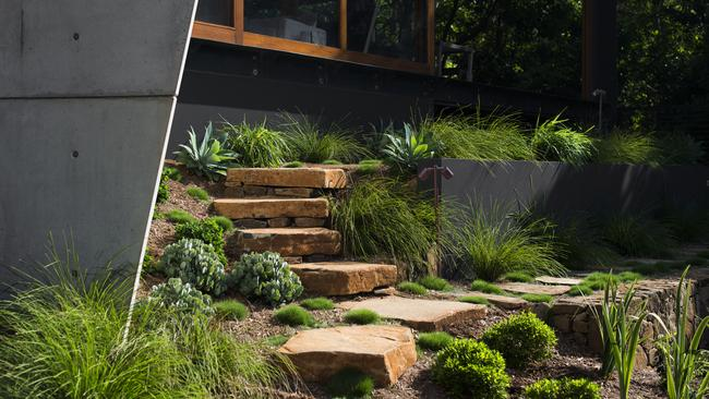 Byron Bay garden design blends with surrounding bush ...
