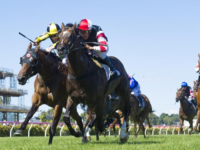 His trio can expert fierce opposition from the rejuvenated Lord Of The Sky down the Flemington straight.