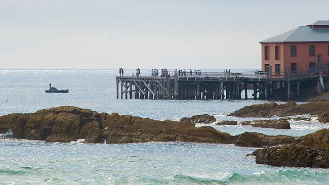 Concerned locals gathered at Tathra Wharf after news of the shark attack broke. Picture: