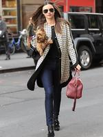 <p>Miranda Kerr was spotted taking her pet pooch, Frankie, to a business meeting in NY. Picture: Snappermedia</p>