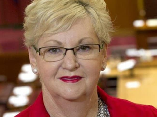 Labor senator Helen Polley says she was pressured by senior ALP members to publicly back gay marriage.
