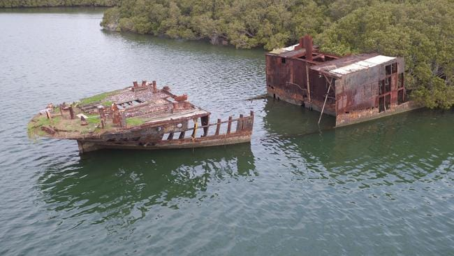 Mangroves have taken over the rusting hull of the SS Ayrfield. Picture: Joshua Hulm