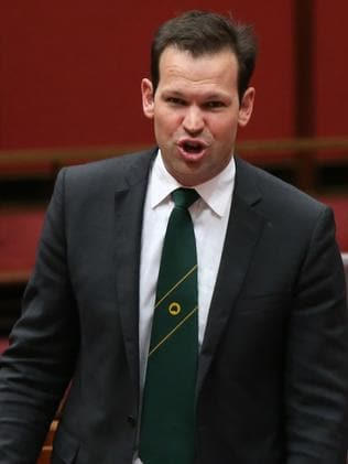 Nationals Senator Matt Canavan in Senate Question Time. Picture: Kym Smith