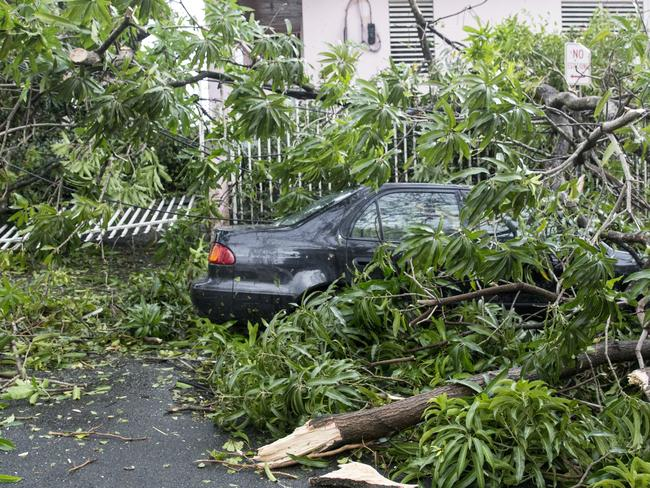 Fallen trees surround a car in the Miramar neighbourhood in Puerto Rico. Picture: Getty Images