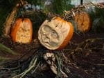 <p>Carved pumpkins are displayed at the New York Botanical Garden in New York. Picture; AP Photo/Seth Wenig</p>