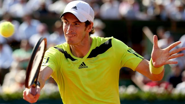 Andy Murray did well to reach the French Open semifinals before being knocked out by Rafael Nadal.